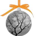 AMR_NY_ball-6
